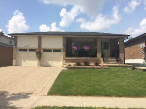 Huge 4 Bed, 3 Bath Home in Newmarket