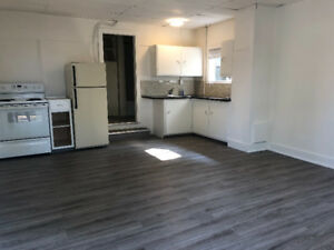 Wonderfully clean, newly painted bachelor - walk to downtown