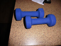 Set of 3 lb Weights ..