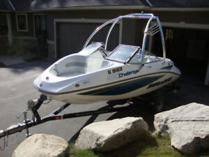 2008 Sea Doo Challenger 180 SE - Only 54 hours!