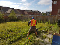 Grass cutting, cleaning, painting, & lawn aeration