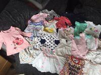 0-3 girls bundle