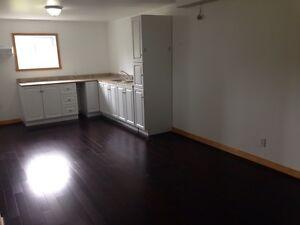 2/3 bedroom apt for rent