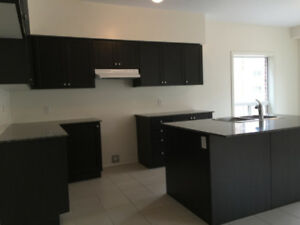 Brand new detached home for rent