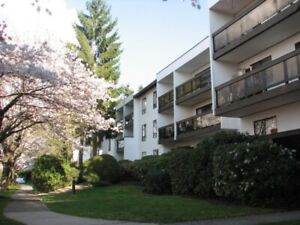 2br.- good location, renovated, well-managed bldg  (BURNABY)