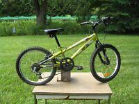 SPortek Rambler bike with 20 inch tires