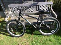 Bigfoot single speed trials bike