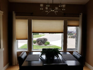 Blinds - Hunter Douglas
