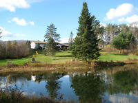 Cozy European Style Home with 64 acres, views, pond, barn +++