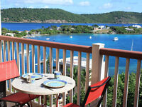 Carribean condo for rent in front of the sea in St Thomas USVI