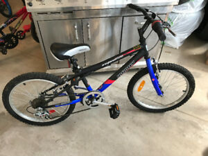 INFINITY 20 INCH CHILDREN'S BICYCLE