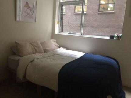 Queen Aloe Vera mattress and Karton bed frame