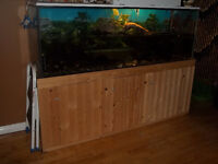 134 GALLON AQUARIUM WITH 2 TURTLES AND FISH FOR SALE