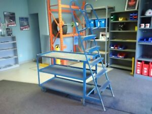 Rolling Ladder with built in shelving / cart