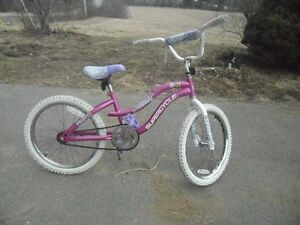 """NICE"" QUALITY GIRL'S 20 INCH SUPER/CYCLE DREAM WEAVER."