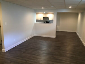 Brand New Executive Basement Suite
