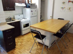 Apartment sublet next to McGill, big 2 1/2 (size of a 3 1/2)