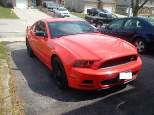 2013 Ford Mustang V6 Club of America Edition