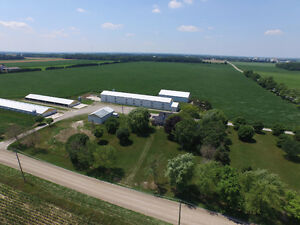 SOLD: Modern Poultry Farm w 4 Bdrm, Shop & Corn in Hensall! Stratford Kitchener Area image 2