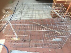 Parrot Cage Mount Lawley Stirling Area Preview
