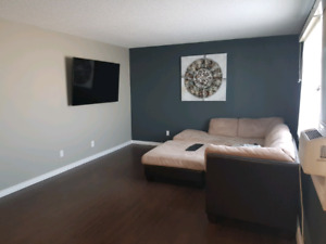 One bedroom apartment available may 1st.