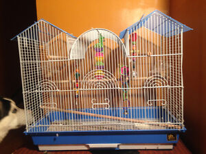 Green parakeet - cage & toys included.