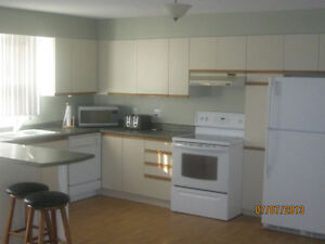 Fully Furnished Large 2 Bedroom  Apartment