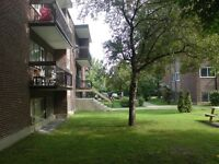 1 bdrm (util incl) centrally located