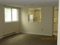 3 Bedroom Condo in Timberwalk - $1100/mth plus utilities