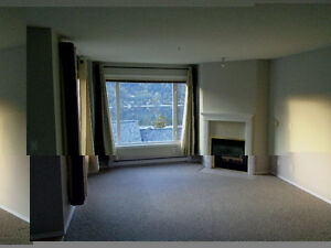condo for rent in Nelson