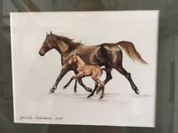 Water colour- horses