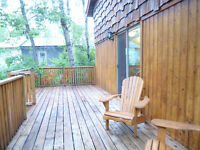 Stunning Renovated Cabin / Cottage – Struthers Lake Region Park