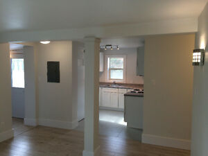 Recently renovated 2 bedroom apartment close to DT