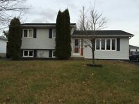 3 level split in Riverview for sale