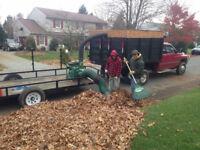 Leaves Fall Clean Up, Yard Raking, Leaf Blowing, Garden Pruning