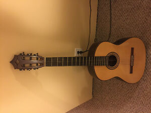 Guitar, Handmade Classical ?offers or trades?