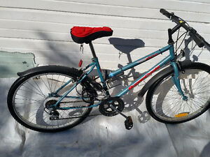 2 ADULT MOUNTAIN BIKES,    I DELIVER