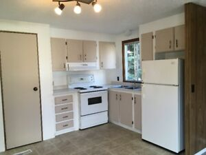 Newly Renovated Mobile Home for Rent or Sale!