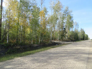10 acres vacant land in Crooked Creek area
