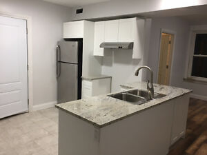 Brand New 1 Bedroom House Apartment for Rent in Uptown Waterloo