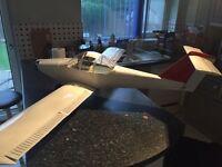 RC 2 stroke petrol plane