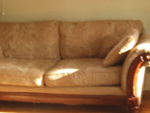 Beautiful Couch for free
