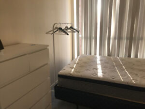 One Bed Room for rent (Female only) - Bay and Wellesley