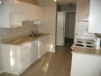Large 2-Level, 2-Bedroom Condo for Rent - FREE UTILITIES