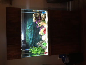 47 gallon fish tank and custom stand