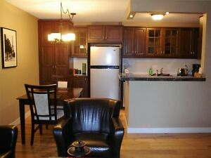 Furnished Executive Condo Inner City
