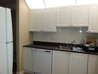 Looking for Responsible, clean, roommate