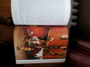 For sale.norman Rockwell book
