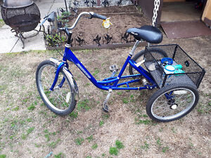 3-speed adult Trike like new condition
