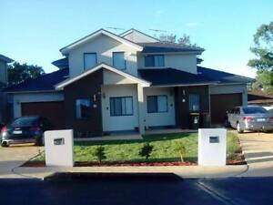 Duplex master room for lease Westmead Westmead Parramatta Area Preview